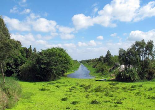 Vườn quốc gia U Minh Thượng - Ảnh: Khả Hòa
