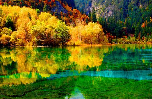 Những thảm lá vàng rực rỡ hòa quyện trong màu xanh của sông suối khiến cảnh sắc thiên nhiên như một bức tranh.