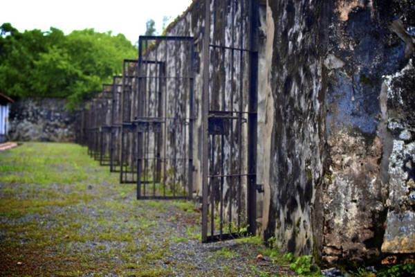 Khu biệt giam phủ đầy rêu phong khiến những ai ghé thăm đều có cảm giác rợn người. Ảnh: Frenchydiary