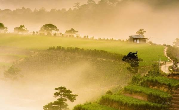 Trại Mát - vùng ngoại ô tràn đầy sức sống của phố núi Đà Lạt. Ảnh:Michel Nguyen