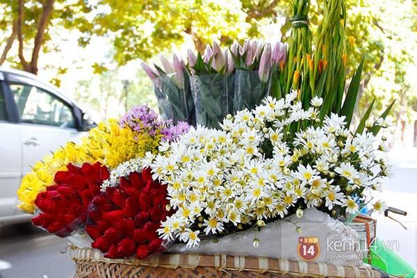 Không hề kém sắc khi đứng cạnh loài hoa khác.