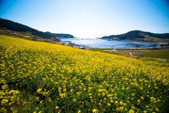 Tham Khảo Top 30 Địa Điểm Đẹp Nhất Du Lịch Tại Hàn Quốc