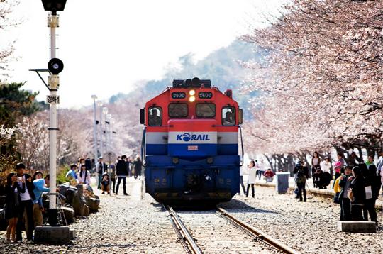 Ga tàu hỏa Kyeongwha ở Jinhae