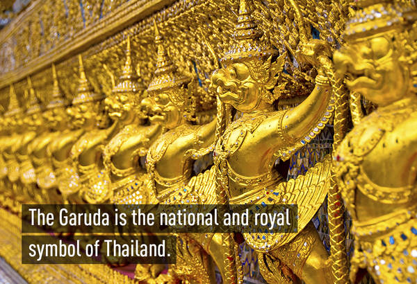 Garuda (Kim sí điểu) là chủ thể trên quốc huy của vương quốc Thái Lan và là biểu tượng của lòng trung thành tại nước này