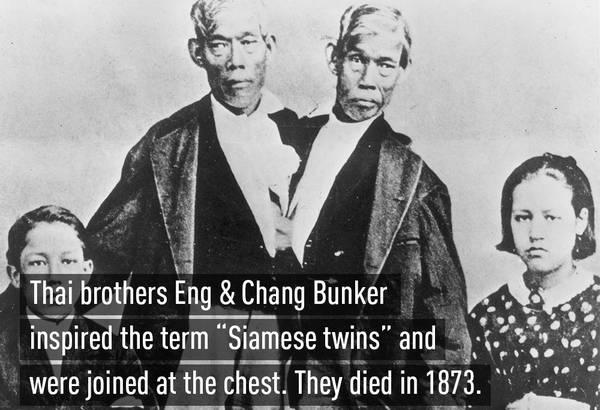 """Chang Bunker và Eng Bunker (ngày 11 tháng 5 năm 1811 – ngày 17 tháng 2 năm 1874) là cặp sinh đôi dính liền hai anh em đã được người đời còn gọi là """"anh em sinh đôi  bị dính nhau ở phần sụn xương ứcngười Xiêm"""" vì họ sinh ra ở Xiêm.[1][2]"""