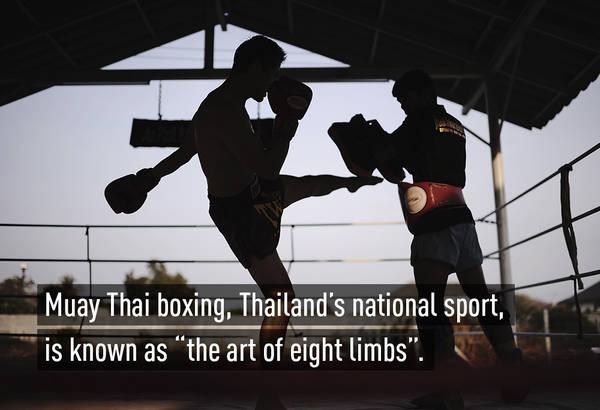 Muay Thai (tiếng Thái: มวยไทย, chuyển tự: Muai Thai, IPA: mūɛj tʰāj) là một môn võ thuật cổ truyền đồng thời là một môn thể thao phổ thông của Thái Lan.