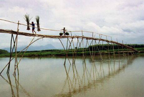 top-nhung-cay-cau-dang-so-nhat-the-gioi-traveltimes1
