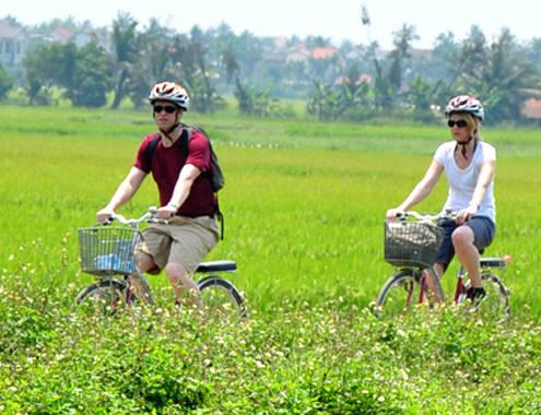 Du khách ngoại say mê đồng lúa Việt Nam