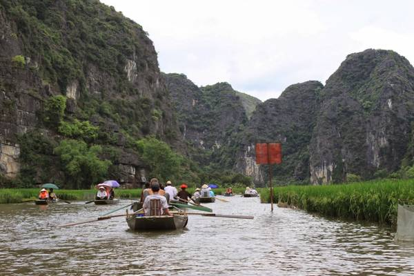 Du thuyền trên sông Ngô Đồng