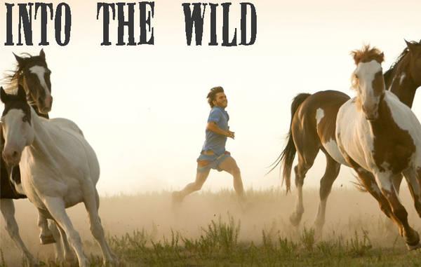 Into the Wild (Về với thiên nhiên)