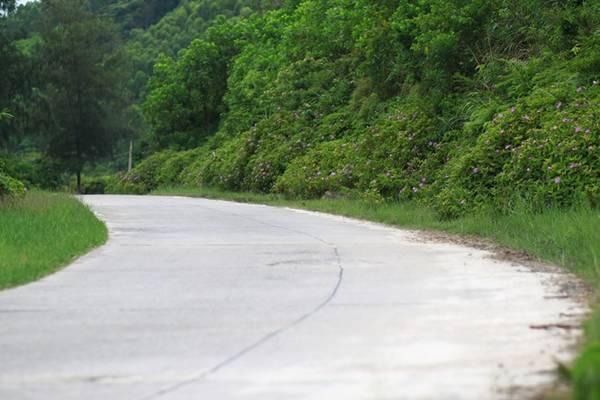 Nối giữa 2 bãi biển là những con đường mềm mại uốn lượn trên đảo.