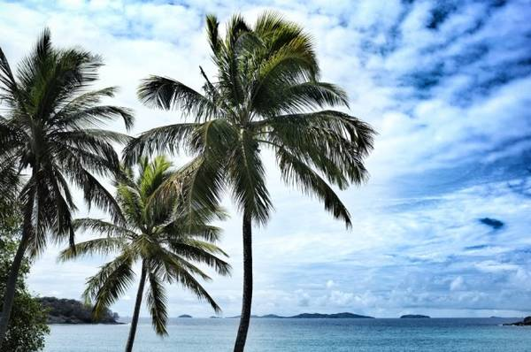 Những bãi biển tốt nhất thế giới