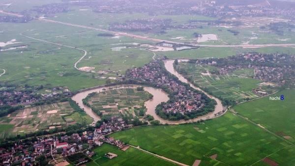 Cánh đồng lúa đang vụ xanh lá tại Sóc Sơn.