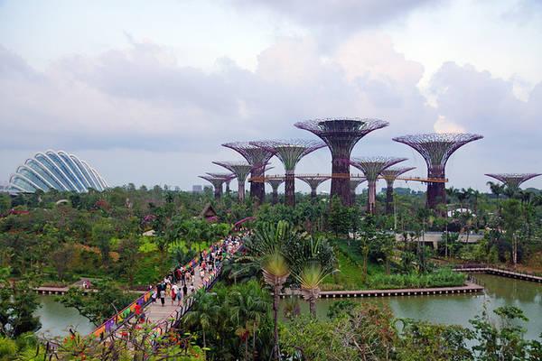 """Kỳ quan """"Gardens by the Bay"""" là điểm thu hút du khách mới của quốc đảo Singapore."""