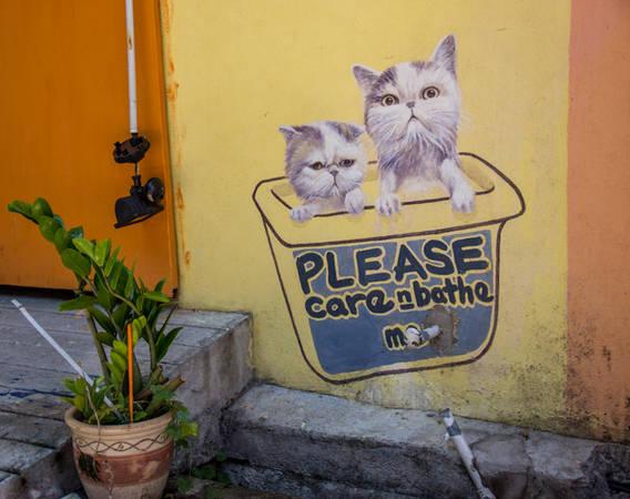 Những hình ảnh dễ thương như thế này chỉ được tìm thấy ở Penang.