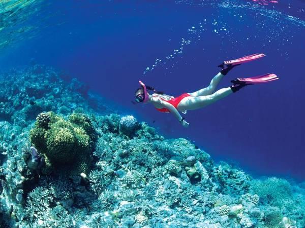 Lặn biển mang đến cho bạn cảm giác mới lạ đến không ngờ.