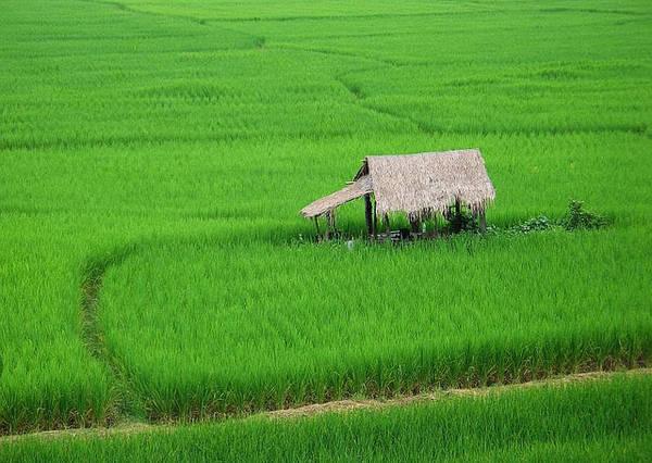 Thai Lan me hoac du khach voi 10 tour du lich an tuong ivivu 10