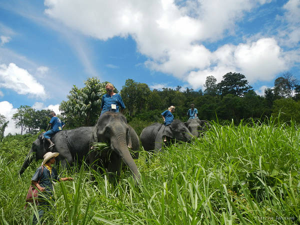 Thai Lan me hoac du khach voi 10 tour du lich an tuong ivivu 3