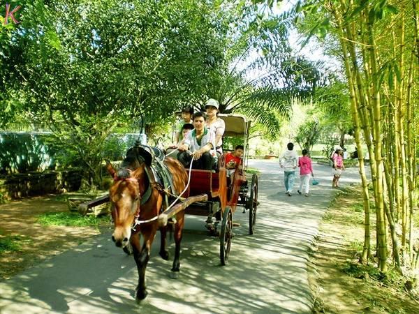 Thử cảm giác đi xe ngựa trên những con đường yên tĩnh của miền quê.