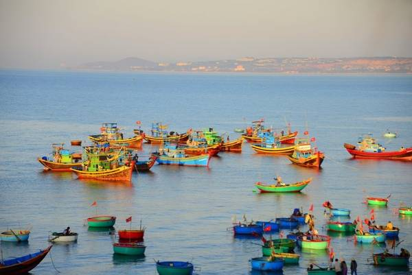 Những chiếc tàu đánh cá đầy màu sắc trên biển