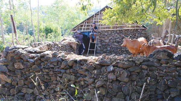 Du lịch Phú Yên - Chuồng bò bằng đá của ông Huỳnh Ngọc Sanh ở làng Phú Hội
