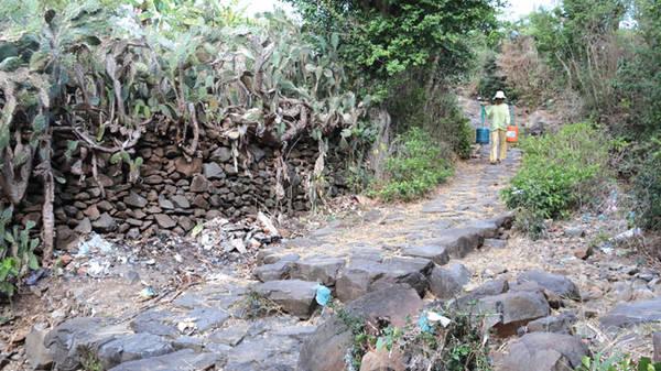Du lịch Phú Yên - Nhiều đường bêtông mở ra thuận tiện nên những con đường đá khắp làng Phú Hạnh đang dần xuống cấp vì ít người đi