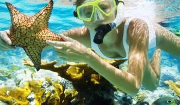 Lặn biển ngắm san hô Phú Quốc