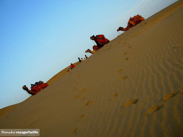 Sa mạc ở Rajasthan (Ảnh: Renuka)