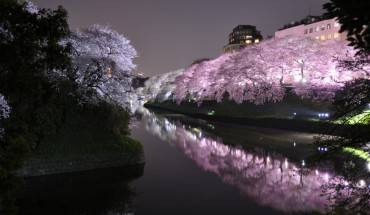 9. Cung điện Hoàng gia Tokyo thường không mở cửa đón du khách, ngoại trừ ngày sinh nhật của Đức vua hoặc năm mới. Ảnh: Marufish
