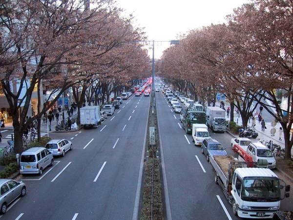 Du lich Nhat Ban - Các đường phố của Nhật Bản rất sạch sẽ, dù không thấy bóng dáng của những chiếc thùng rác