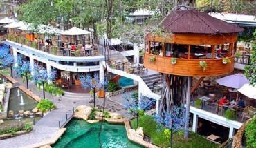 Ngoài những ngôi nhà trên cây, đây còn được biết đến là quán cà phê lớn nhất TP.HCM, với diện tích lên đến 6.000 m2. Với nhiều không gian được thiết kế độc đáo.