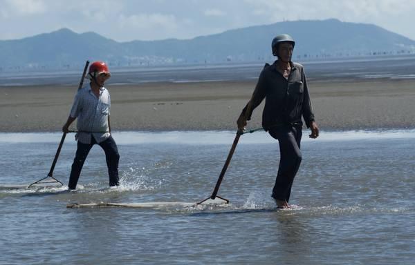 Du lich Sai Gon - Quan sát người dân địa phương cào ngao trên bãi biển