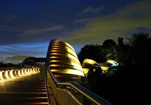 Cầu đi bộ cao nhất ở Singapore Henderson Wave lung linh trong đêm.
