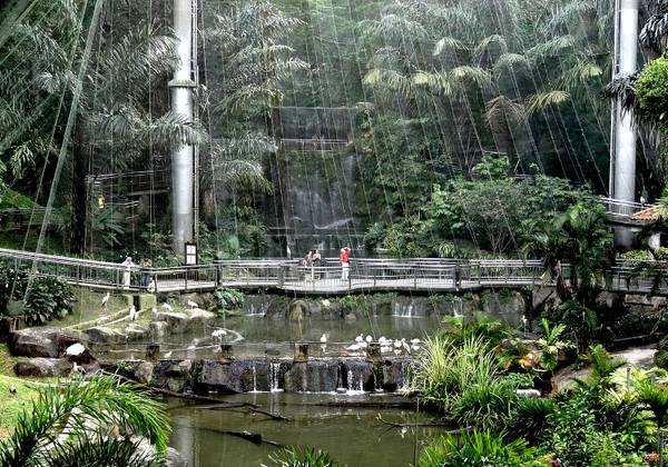 Du lich Kuala Lumpur - Công viên chim Kuala Lumpur