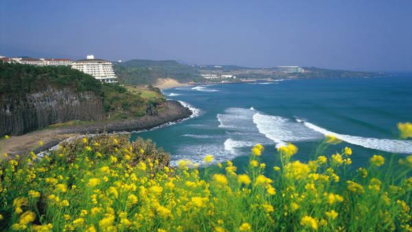 Du lịch Đảo Jeju không cần visa.
