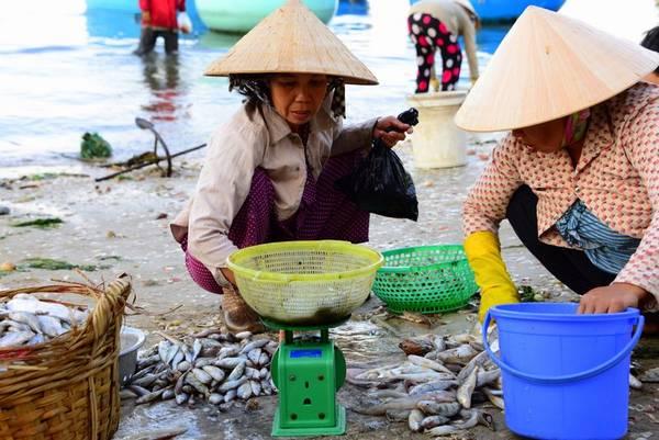 Tham quan khu chợ cá  - một tour du lịch miễn phí của khu ghỉ dưỡng.