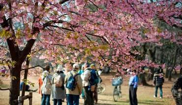 Xin-visa-di-bui-Nhat-ivivu.com-2