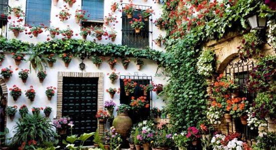 Chiêm ngưỡng những ngôi nhà được trang hoàng vô cùng bắt mắt.