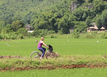 Du lịch Việt Nam - Bức tranh đồng quê đẹp bình dị mà sâu lắng