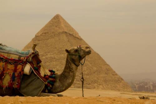 du lịch châu Âu:  Đến Cairo, bạn sẽ bị cuốn theo những câu chuyện huyền bí xoay quanh Kim tự tháp và được cưỡi trên lưng của lạc đà.