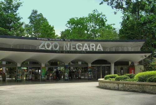 Du lịch Malaysia khám phá vườn thú quốc gia sinh động
