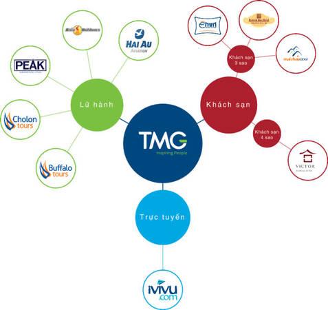 Những lĩnh vực kinh doanh chính của TMG