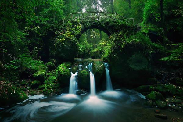 Cầu Mullerthal, Luxembourg và khung cảnh đẹp huyền bí, cuốn hút.