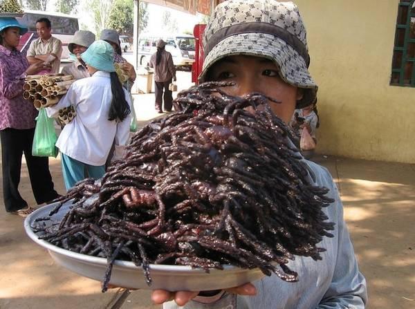 """Món nhện chiên giòn một """"đặc sản"""" của Campuchia."""