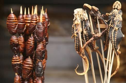 Bạn có dám thử những món ăn này?