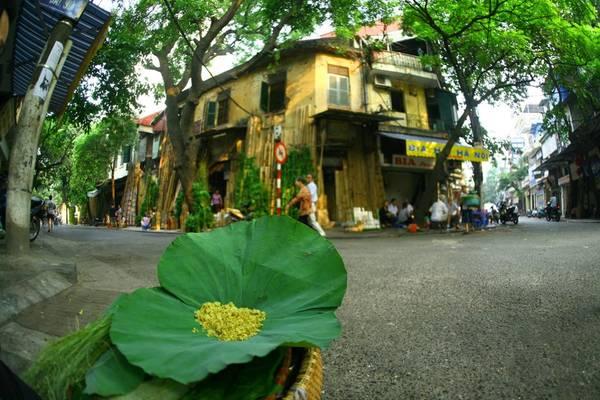 Những con đường nhỏ và những gánh hàng rong là nét đặc trưng vốn có của Hà Nội. Ảnh vemaybayonline.