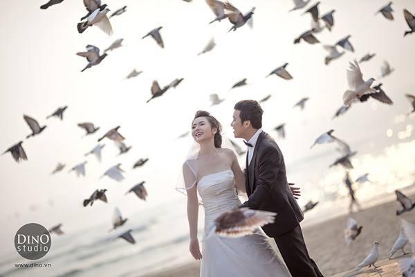 Chụp ảnh cưới với bồ câu mang đến ấn tượng độc đáo.
