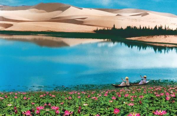 Bàu Sen, Bàu Trắng -Nơi các nhà nhiếp ảnh có thể ghi lại những bức ảnh thiên nhiên tuyêt đẹp.
