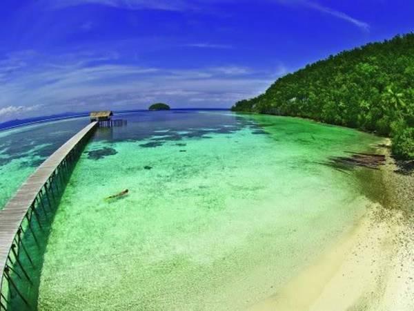 Raja Ampat sở hữu một hệ sinh thái dưới nước đa dạng nhất hành tinh.