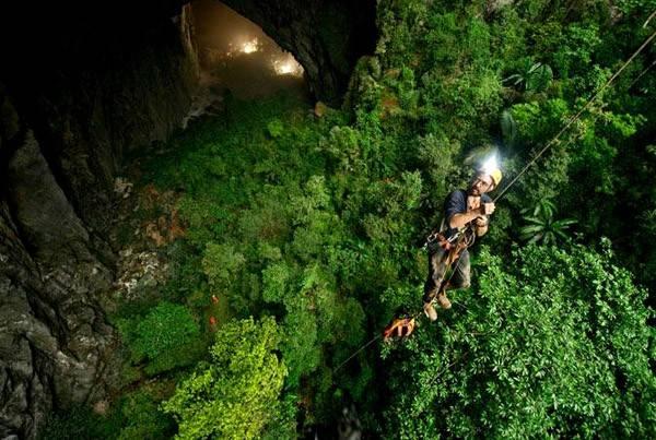 """Các chuyên gia thậm chí đã gọi khu rừng trong hang này là """"vườn địa đàng"""" nhằm tôn vinh vẻ đẹp tuyệt mĩ này."""
